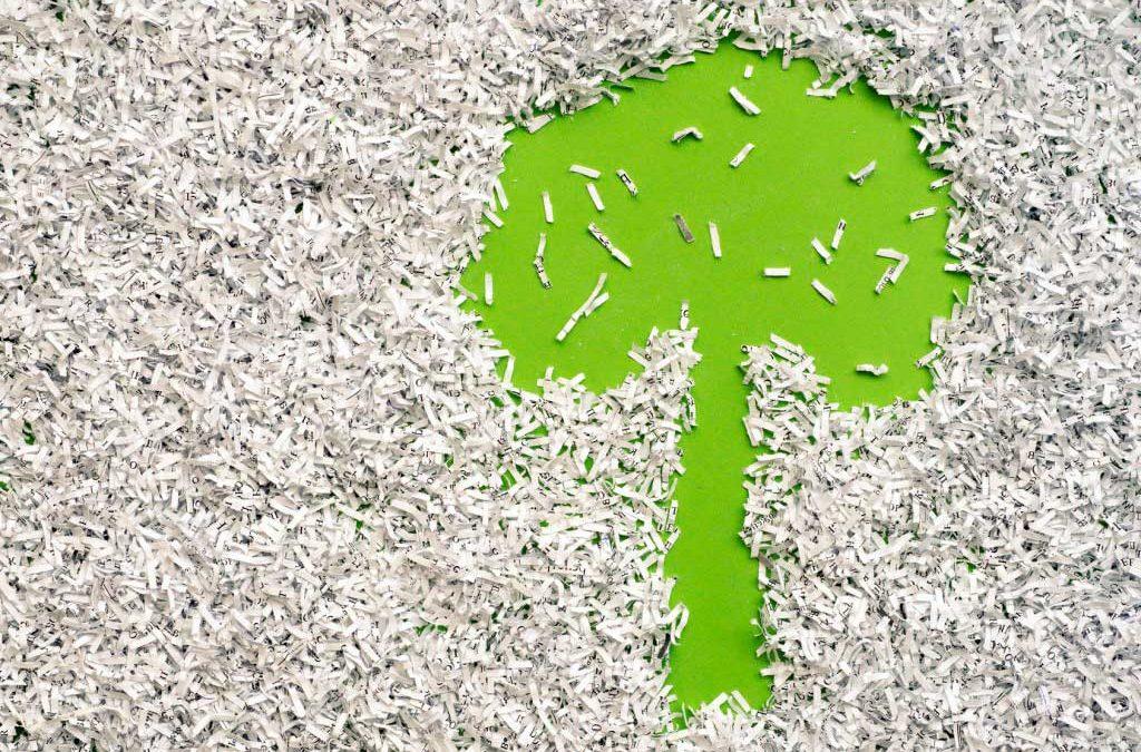 Cuida el medio ambiente con las impresoras ecológicas