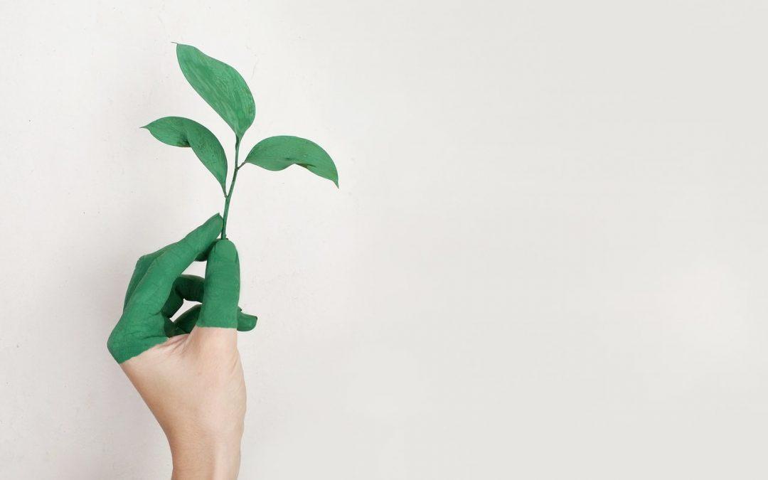 Consejos para una impresión profesional desde la oficina más ecológica